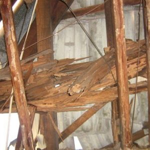 Wood damage by termites
