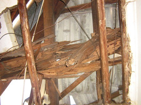 Wood damage by termites