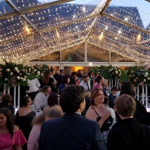 wedding fairy lighting
