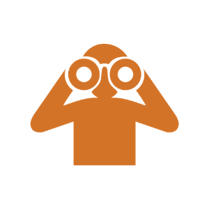 icon 1.2