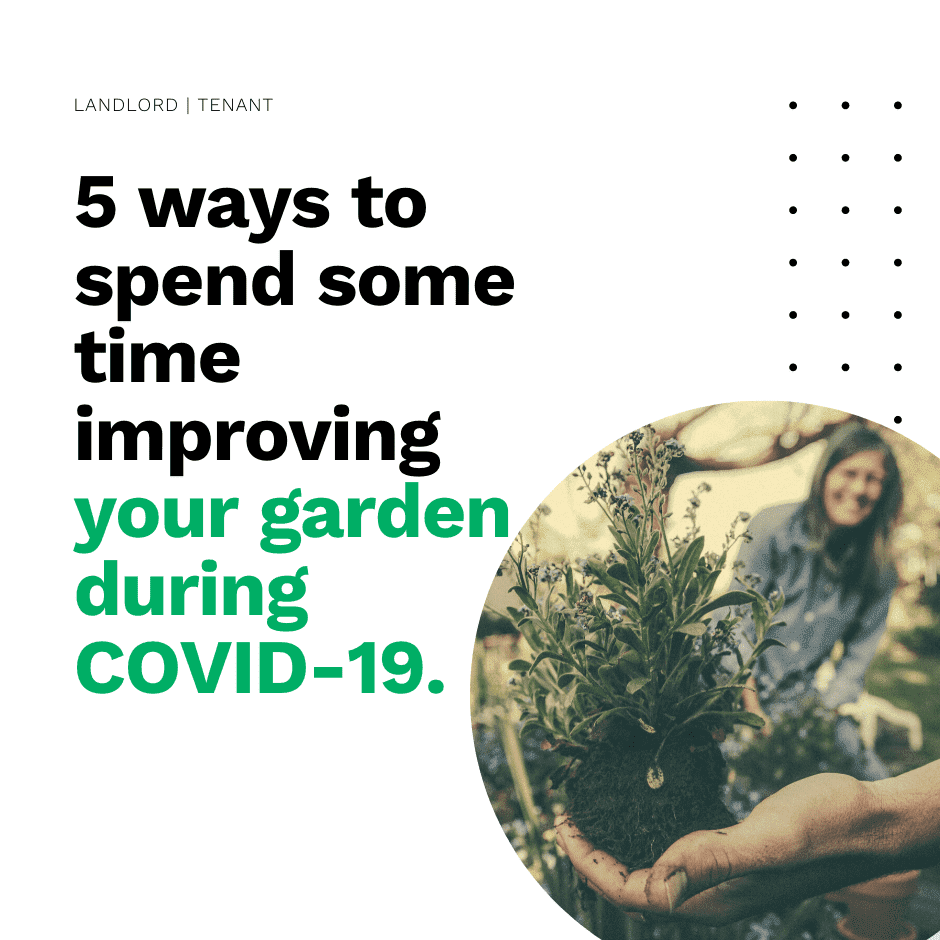 5 ways to spend some time improving your garden during COVID-19