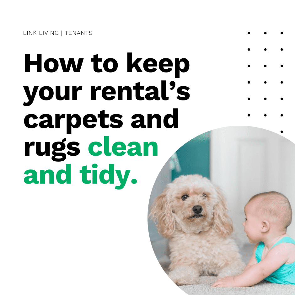How to keep your rental's carpets and rugs clean and tidy