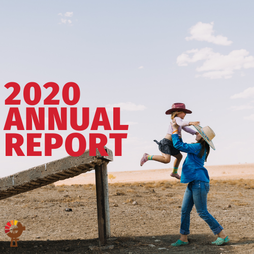 https://wpstaq-ap-southeast-2-media.s3.ap-southeast-2.amazonaws.com/outbackfutures/wp-content/uploads/media/2020/11/2019-Annual-Report-Tiles.png